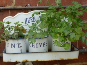 Herbs © 2014 Jacquie Garton-Smith